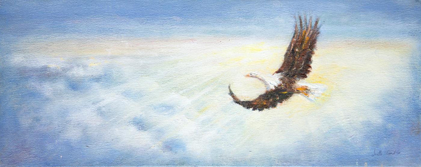 Oil - Eagle - 20x50
